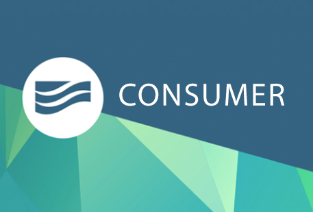 digital banking consumer user guide